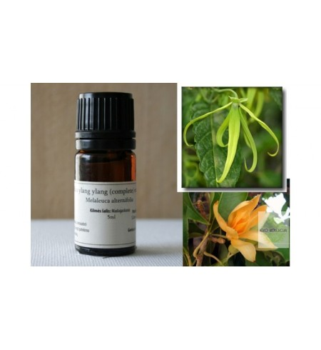 Ylang Ylang complete eterinis aliejus